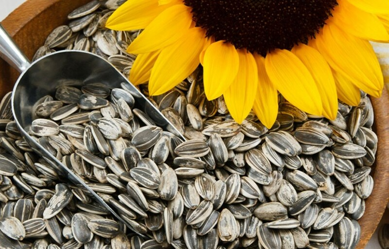 sunflower seeds 84529